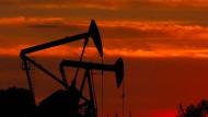 Der Ölpreis sinkt seit Monaten.
