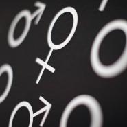 Sind Frauen die besseren Anleger oder Männer? Verschiedene Studien kommen hier zu unterschiedlichen Ergebnissen.