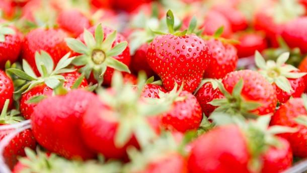 Erdbeeren und Aktien