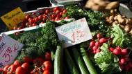 Der heiße Sommer sorgt für teures Gemüse in Deutschland.