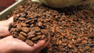 Rückschlag für die Aktie von Barry Callebaut