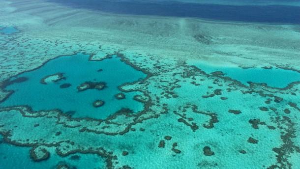Widerstand australischer Umweltschützer soll eingeschränkt werden