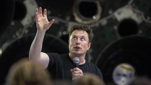 Die Musk-Bändigerin