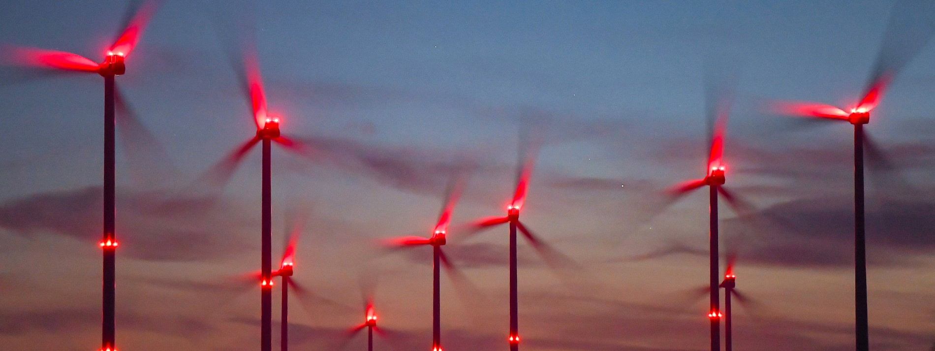 Wagniskapitalgeber für Klimaschutz