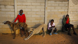 Kredite für Afrika