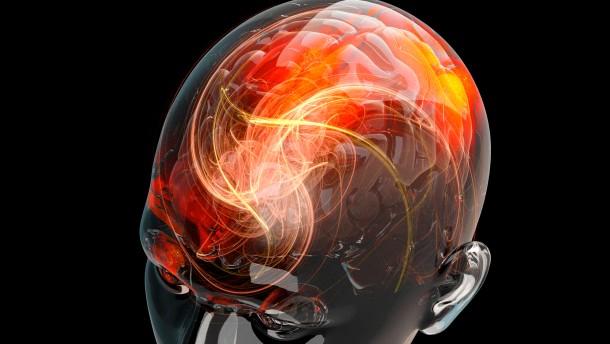 Können wir das Gehirn kurieren?