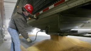 Die Macht der Maisbauern von Iowa
