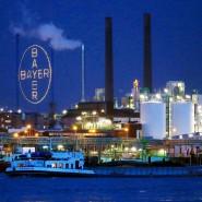Die Aktien von Bayer verlieren am Montag fast 6 Prozent.