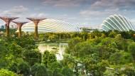 """Auch Singapur ist auf dem Weg zur """"Smart City"""""""