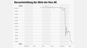 Infografik Chart Hess AG 130213