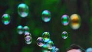 Spekulative Blasen gleichen sich oft in typischen Merkmalen