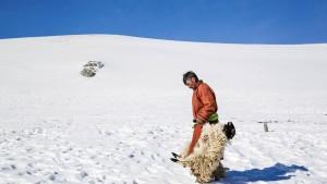 Zahlungskrise in der Mongolei