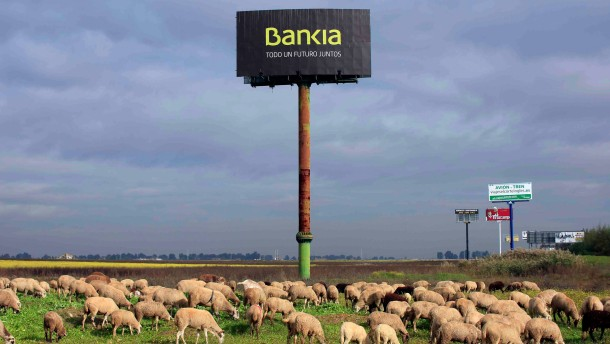 Sheep graze next to a billboard of Spain's Bankia bank on the outskirts in the Andalusian capital of Seville