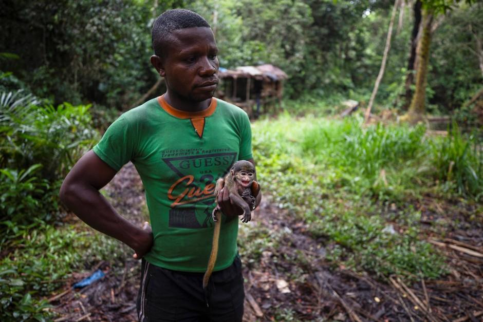 Ein Jäger hält ein Junges einer Rotschwanzmeerkatze, nachdem die Mutter des Babys getötet wurde.