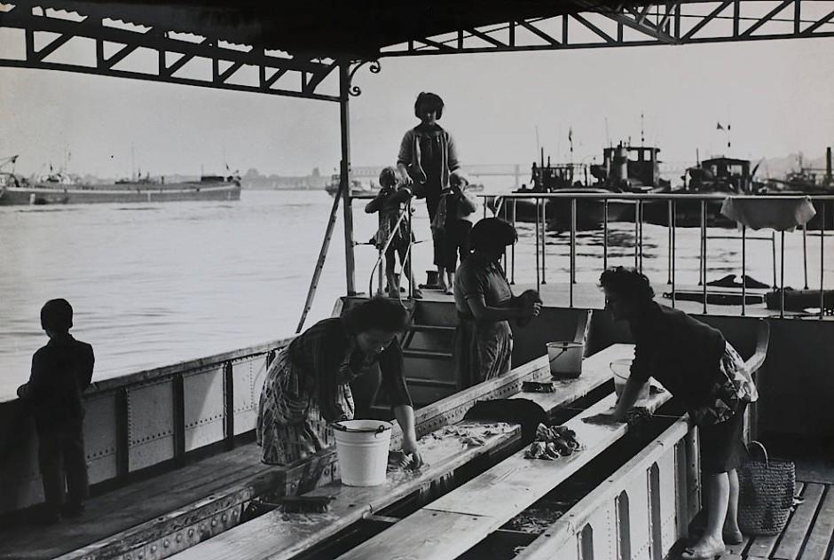 Wäschbrückelche – Oberhalb des Fischtors Iag dieses WäschbrückeIche. Sie wurden wohl 1898 in Betrieb genommen, zu einer Zeit, als das Rheinwasser noch sauber war. Gerne nutzten die Kinder sie zum Baden, Springen und Schwimmen, nicht zur Freude der Wäscherinnen, aber so ersparten sie sich den Eintritt ins Schwimmbad. Die Nutzung wurde 1963 eingestellt, wohl wegen der Wasserverschmutzung des Rheins, außerdem hielten die Waschmaschinen Einzug in die Haushalte. Im Hintergrund Güterschiffe (Kähne) auf der Rhein-Reede nahe dem Winterhafen.