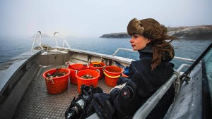 Sie ist Schwedens einzige Austerntaucherin