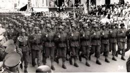 Die unerbittlich kämpfende AfD-Armee