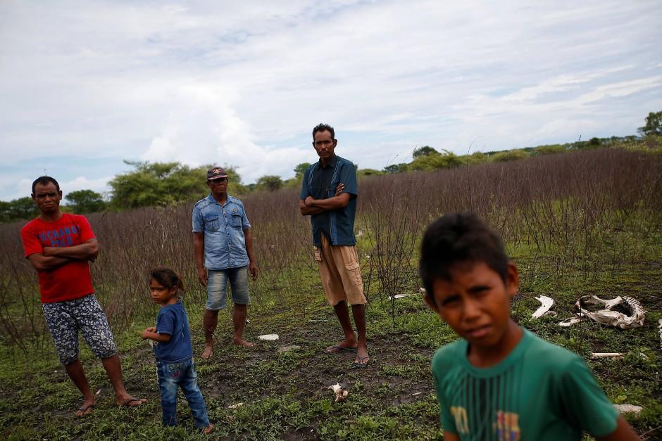 Ndelu Ndaha und seine Familie auf einem Feld im Dorf Hamba Praing. Einen Ernteertrag kann Ndaha hier nicht mehr erwarten.