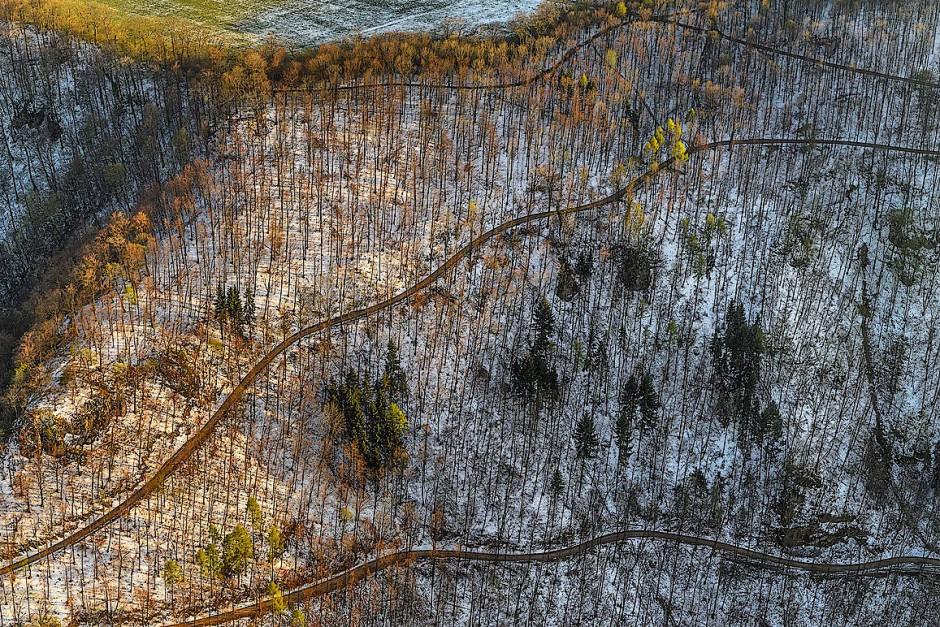 Schneefall im April modelliert die Landschaft des Albtraufs, sodass Wald und Fels plastisch hervortreten. Mit einem diagonal verlaufenden Wegenetz hat der Mensch versucht, die steilen Hänge urbar zu machen.