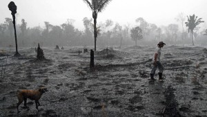 Selbst Brasiliens Wirtschaftsführer prangern den Landraub an