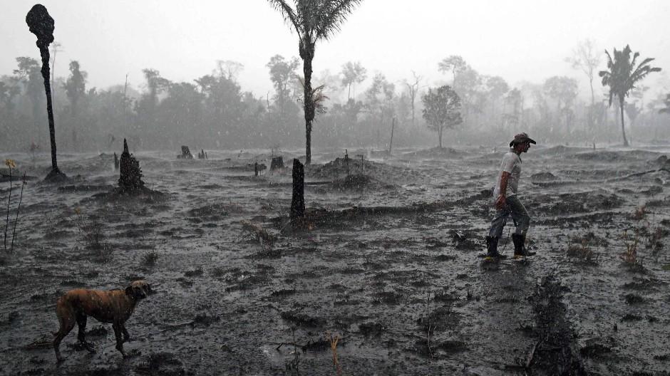 Ein Farmer im August 2019 in einem vom Feuer zerstörten Teil des brasilianischen Regenwalds.