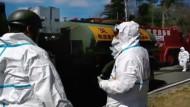 Regierung: Atomruine in Fukushima unter Kontrolle