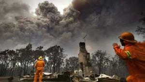 Buschfeuer wüten im Süden Australiens