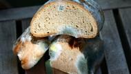 Bei all dem, was die Kontrolleure in einer Münchner Bäckerei fanden, war schimmliges Brot nicht das größte Problem.
