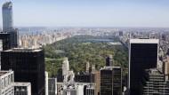 Totes Bärenjunges im Central Park gibt der Polizei Rätsel auf