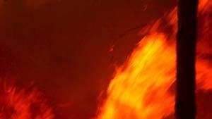 Portugal: Katastrophe durch Brandstifter verursacht?