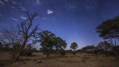 Afrikas Pracht: Ob es mit dem Luangwa-Naturschutzpark in Sambia so schön weitergeht, weiß noch niemand