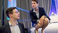 Dämonenhafte Schönheit: So beschreibt der Lebensgefährte von Frauke Petry, Marcus Pretzell, den zauberhaften Charme der AfD-Vorsitzenden.