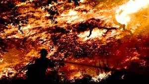 Schlimmstes Feuer seit 60 Jahren