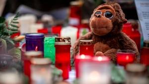 Warum ein Polizist einen Gorilla mit mehreren Schüssen töten musste