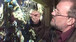 Neue Quallenart im Hamburger Zoo entdeckt