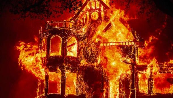 """""""Die Flammen bewegen sich schnell und unvorhersehbar"""""""