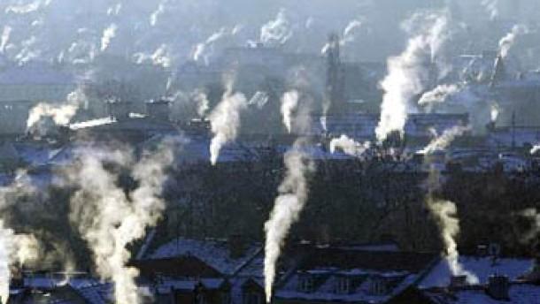 Gendefekte durch Luftverschmutzung