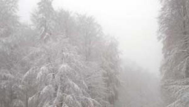 Winterchaos: Tote und Verletzte auf deutschen Straßen