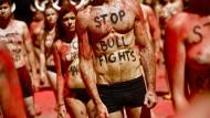 Streit um Stierkampfverbot auf den Balearen