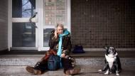 Ohne Wohnung: Kurz vor Weihnachten verlieren Jutta und ihr Border-Collie Mischling Luna ihre Bleibe.