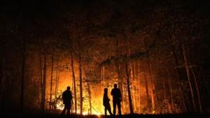 Wieder Tote nach neuen Waldbränden
