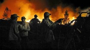 Neue große Waldbrände im Zentrum Portugals