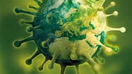 Das Coronavirus grassiert - wie verwundbar sind wir?