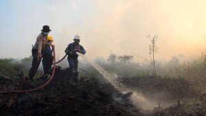 Indonesien allein für Brandrodungen verantwortlich