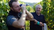 Thomas Rinker mit seinem Sohn Johannes in den Weinbergen