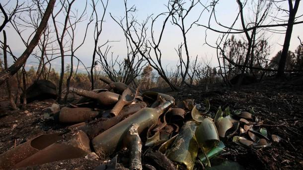 Waldbrände in Galicien unter Kontrolle