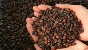 Kaffee teurer - aber in mehr Variationen