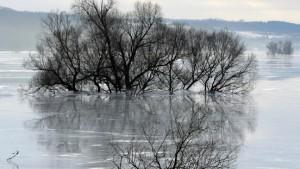 Tauwetter lässt Flüsse anschwellen
