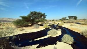 Ausgetretenes Öl könnte Rotes Meer erreichen