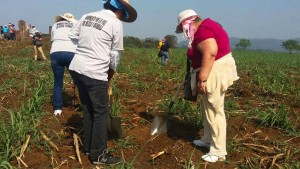 Friedhof des Verbrechens in Mexiko entdeckt